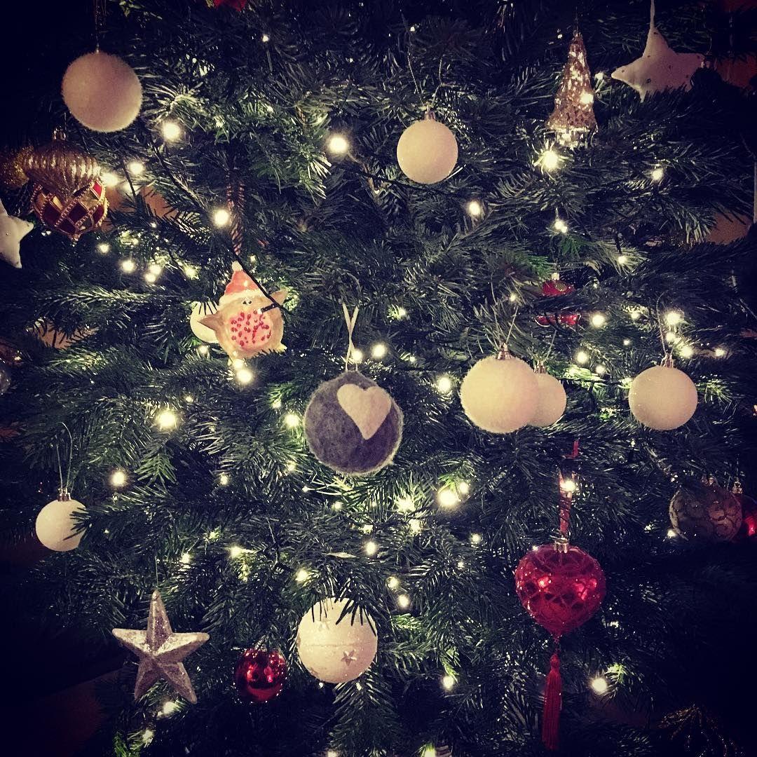 Tree 🎄 #christmasjoy #cosyhouse #twinklelights #bitofred