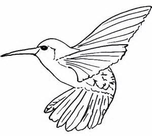 free bird coloring page this bird is the hummingbird