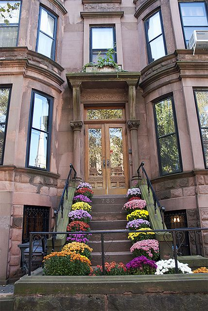 Brownstone House Chrysanthemums On A Park Slope Home Brooklyn New York Love The Flowers