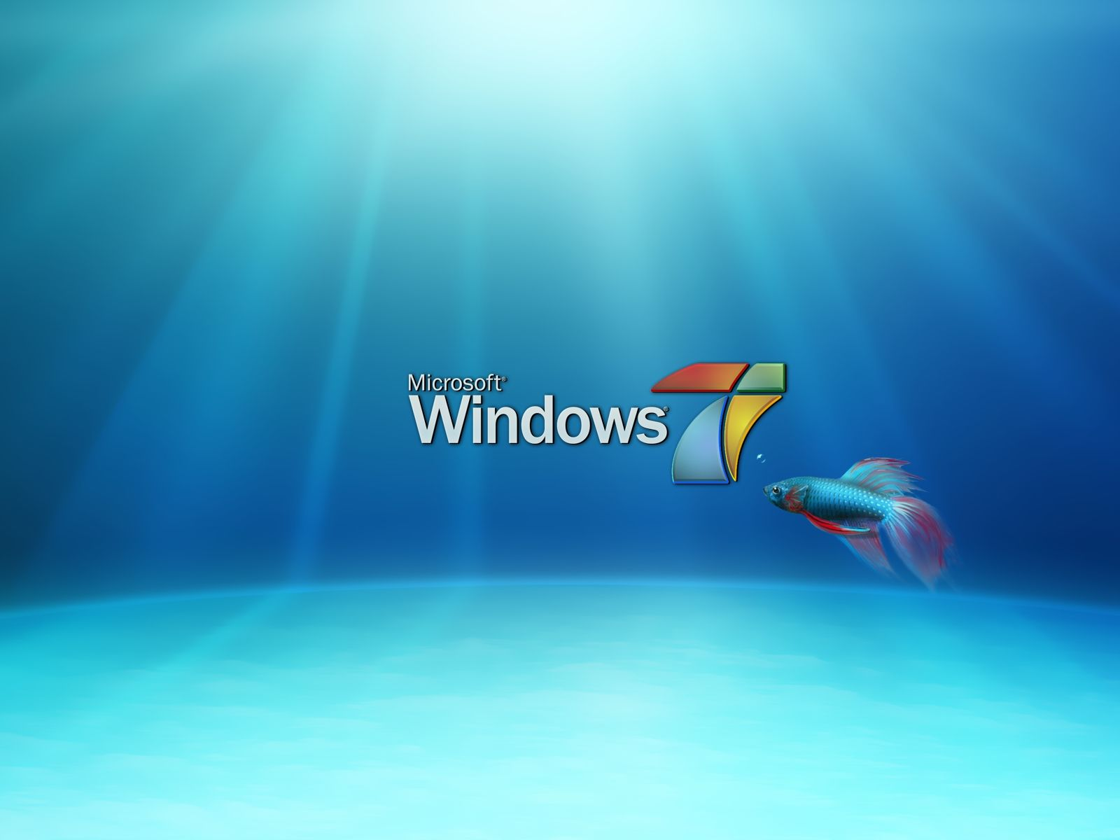 Fish Windows 7 Desktop Wallpaper Ideas for the House