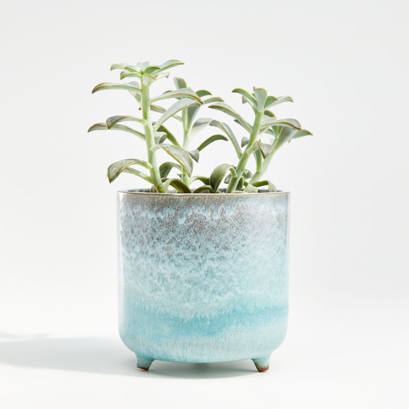 Zea Small Blue Footed Planter Reviews Crate And Barrel In 2020 Blue Planter Planters Pottery Plant Pots