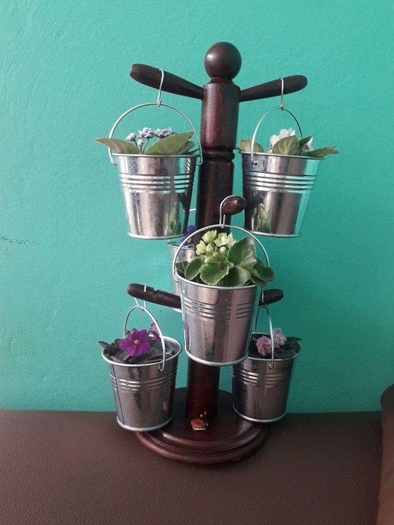 Reciclando con violetas miniatura   Ideas para el hogar   Pinterest
