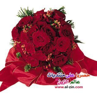 Christmas Wreaths Little Flowers Flowers