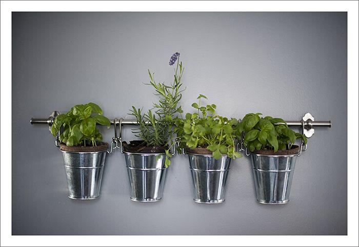 Superbe Life W/ Ju0026M: Indoor Herb Garden   Justin U0026 Mary   Photography