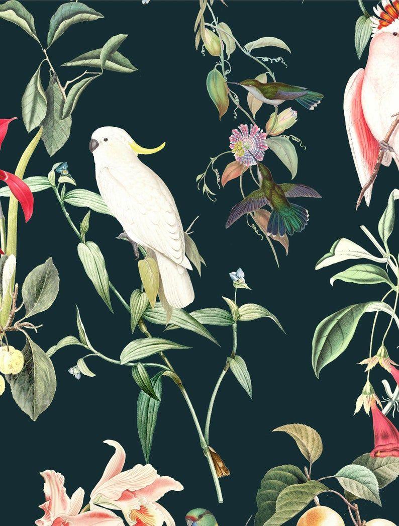 Wallpaper Birds Of Paradise Deep Teal Unique Design Premium Quality Jungle Wallpaper In 2020 Jungle Wallpaper Paradise Wallpaper Birds Of Paradise