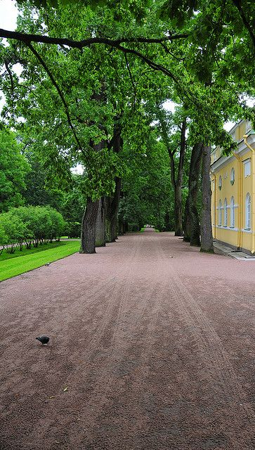 Catherine Palace, Tsarskoye Selo, Russia