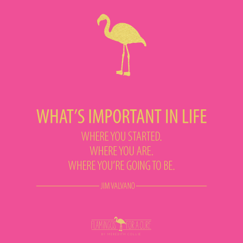 Quotes About Whats Important In Life: What's Important In Life Quote