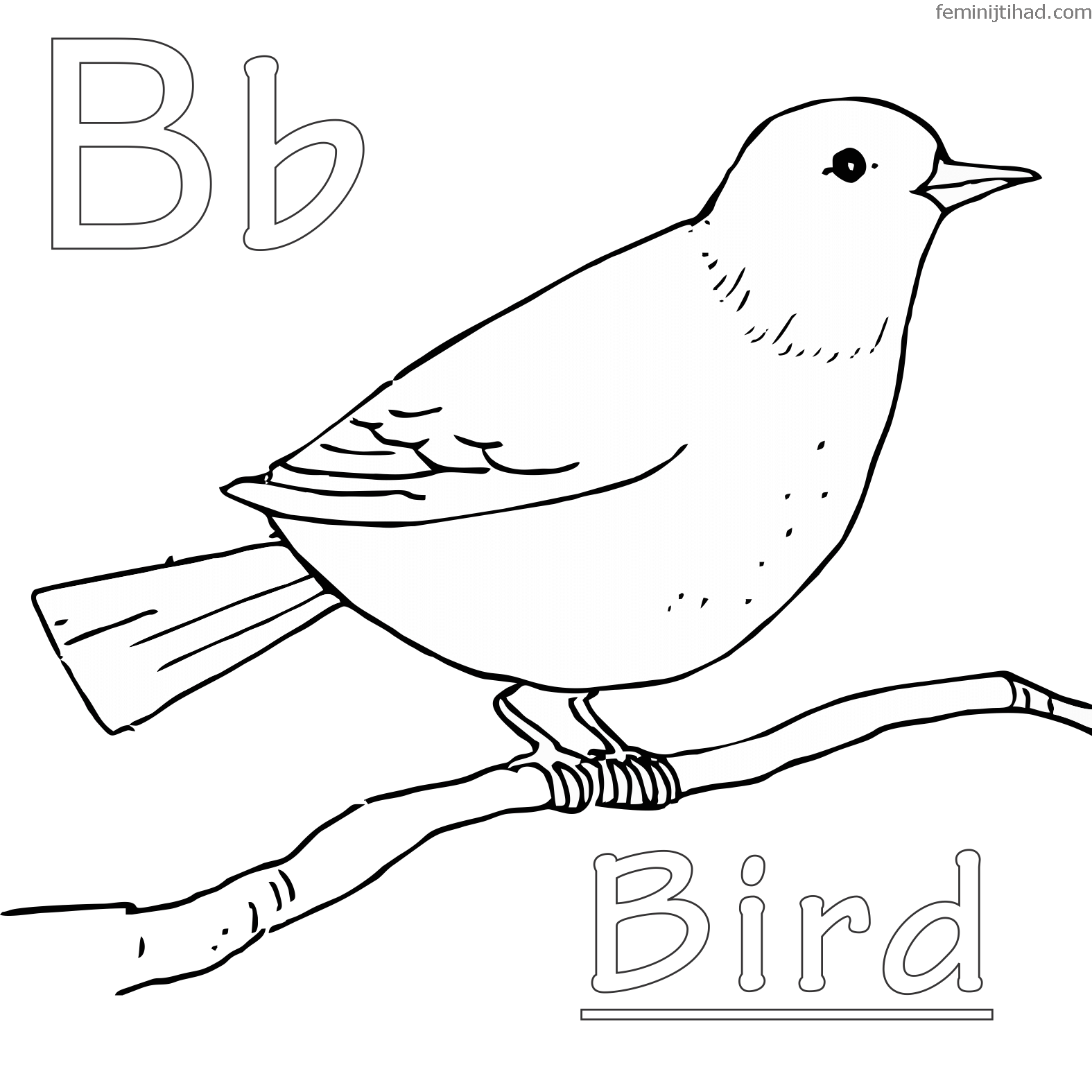 Backyard Bird Coloring Page In