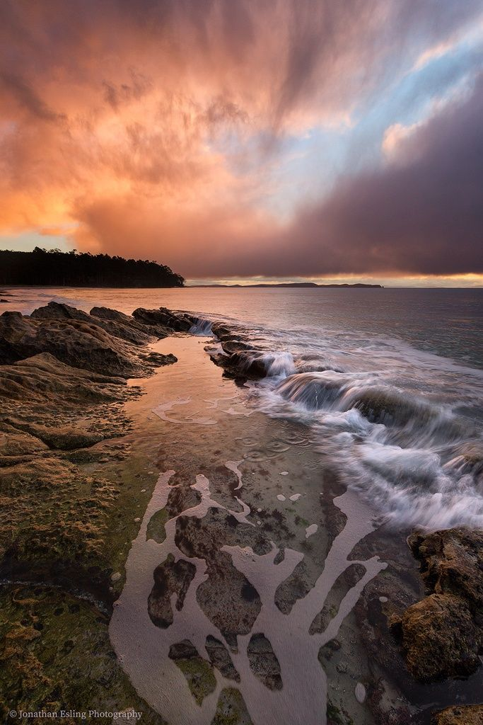 Two Tree Point by Jonathan Esling*