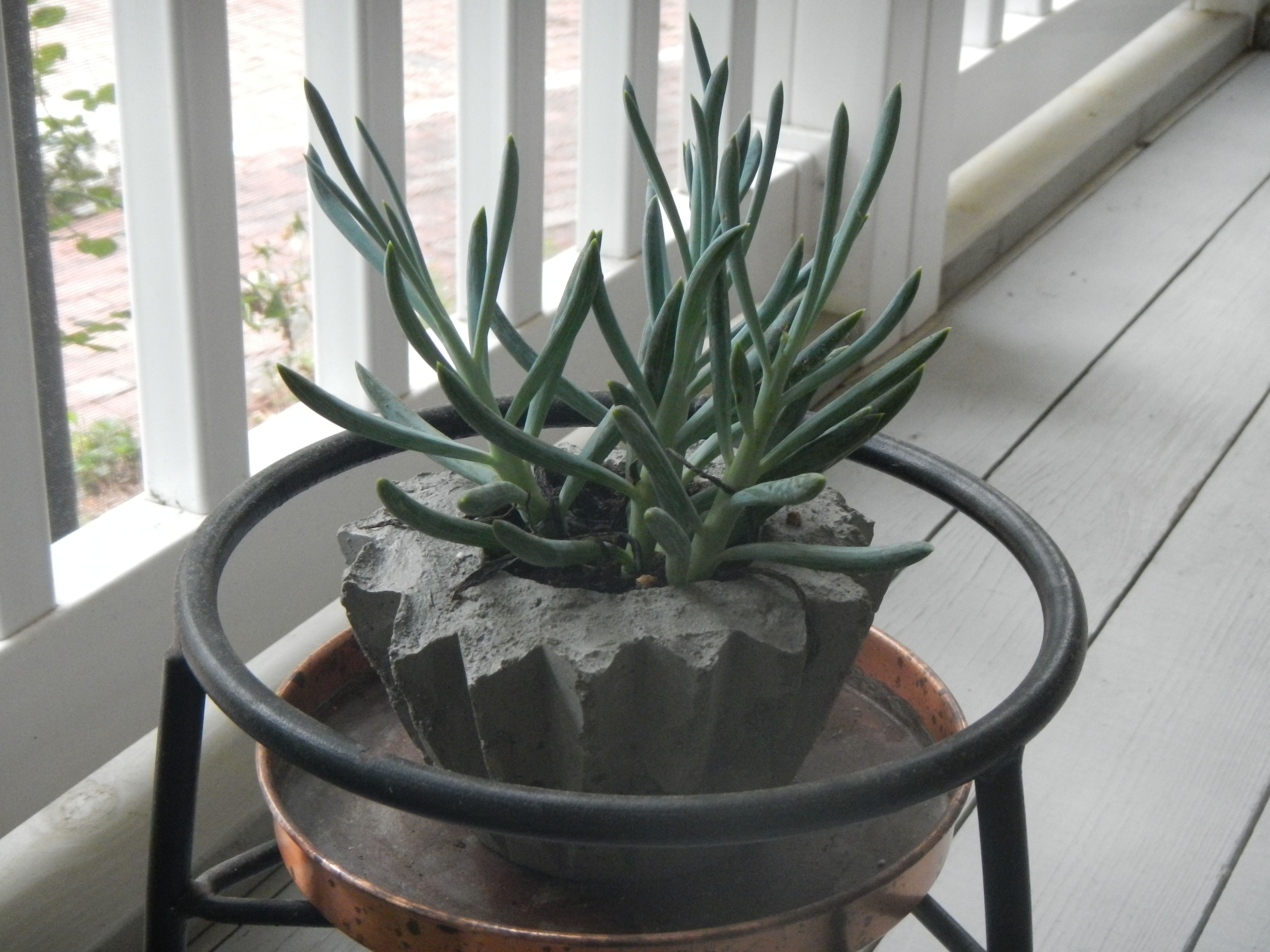 Custom made concrete planter concrete planters planters
