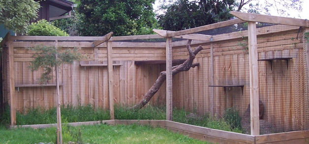 Outdoor cat enclosure integrated into fence if we ever for Chicken enclosure ideas