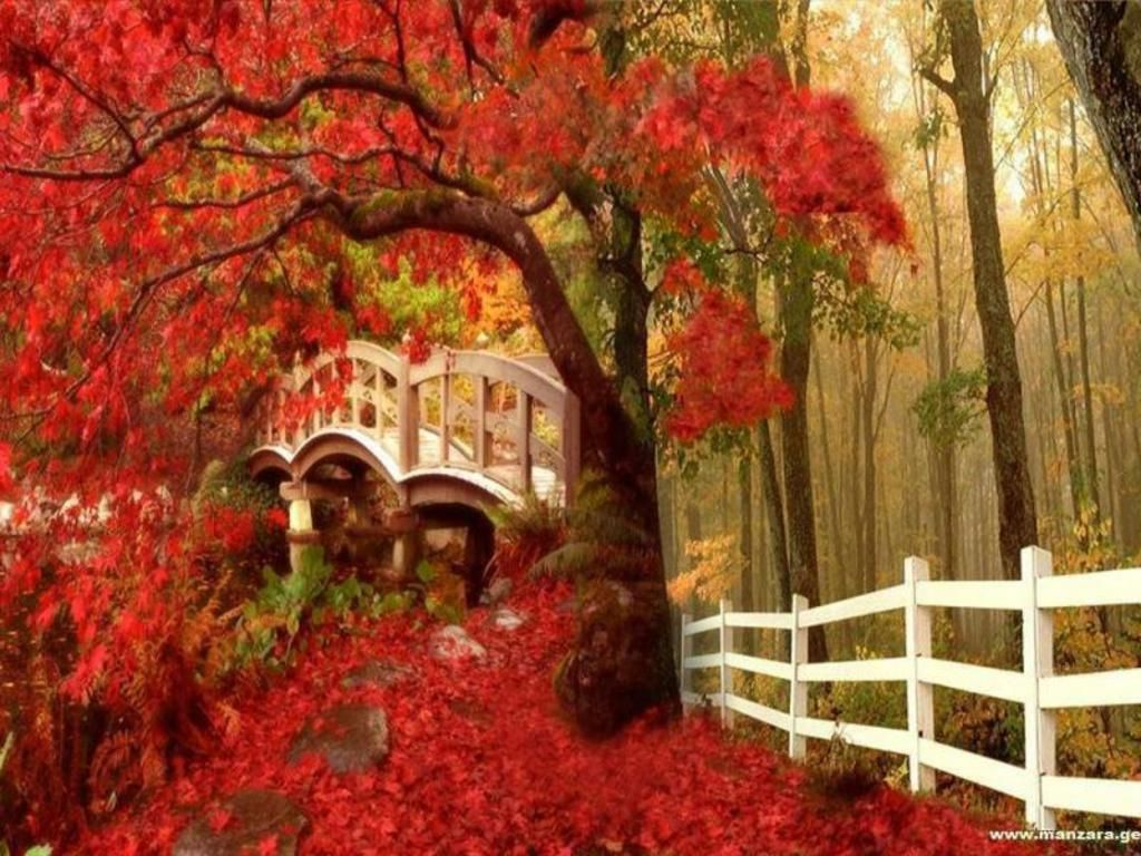 Fall Screensavers And Wallpaper Autumn Wallpaper Download