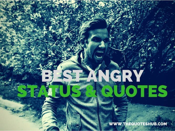 65+ Short Angry Status for Facebook & Whatsapp Angry