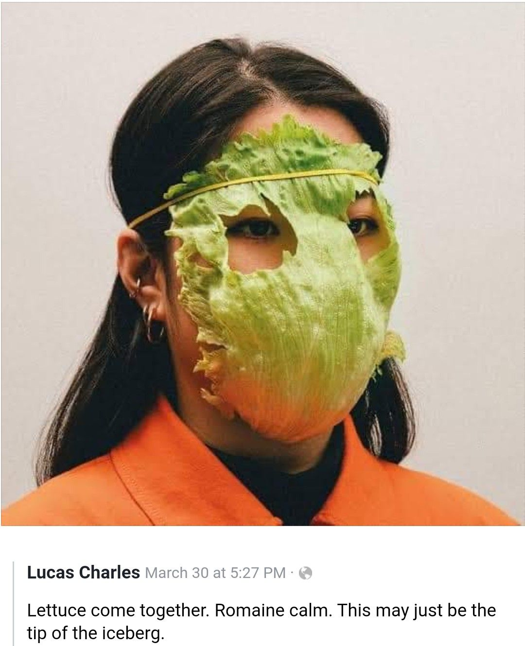 Pin By Lauren Mcalexander On Well It Made Me Smile In 2020 The Mask Costume Mystique Costume Vegan Face Mask