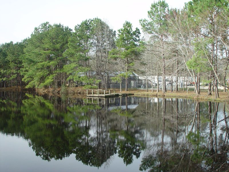 Lone Star Lakes Rv Park New Caney Texas North Gulf