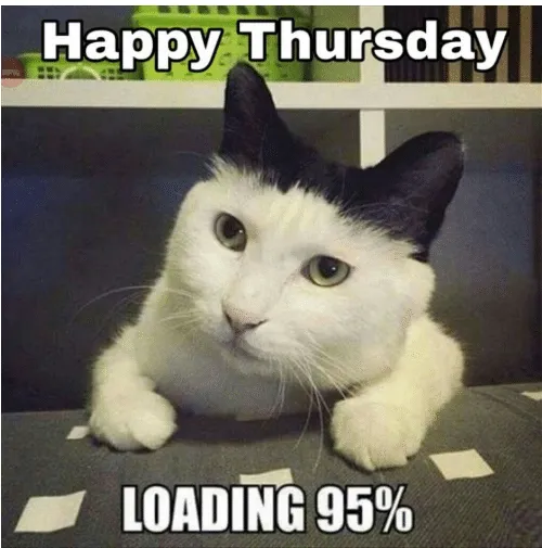 Thursday Work Meme Animal