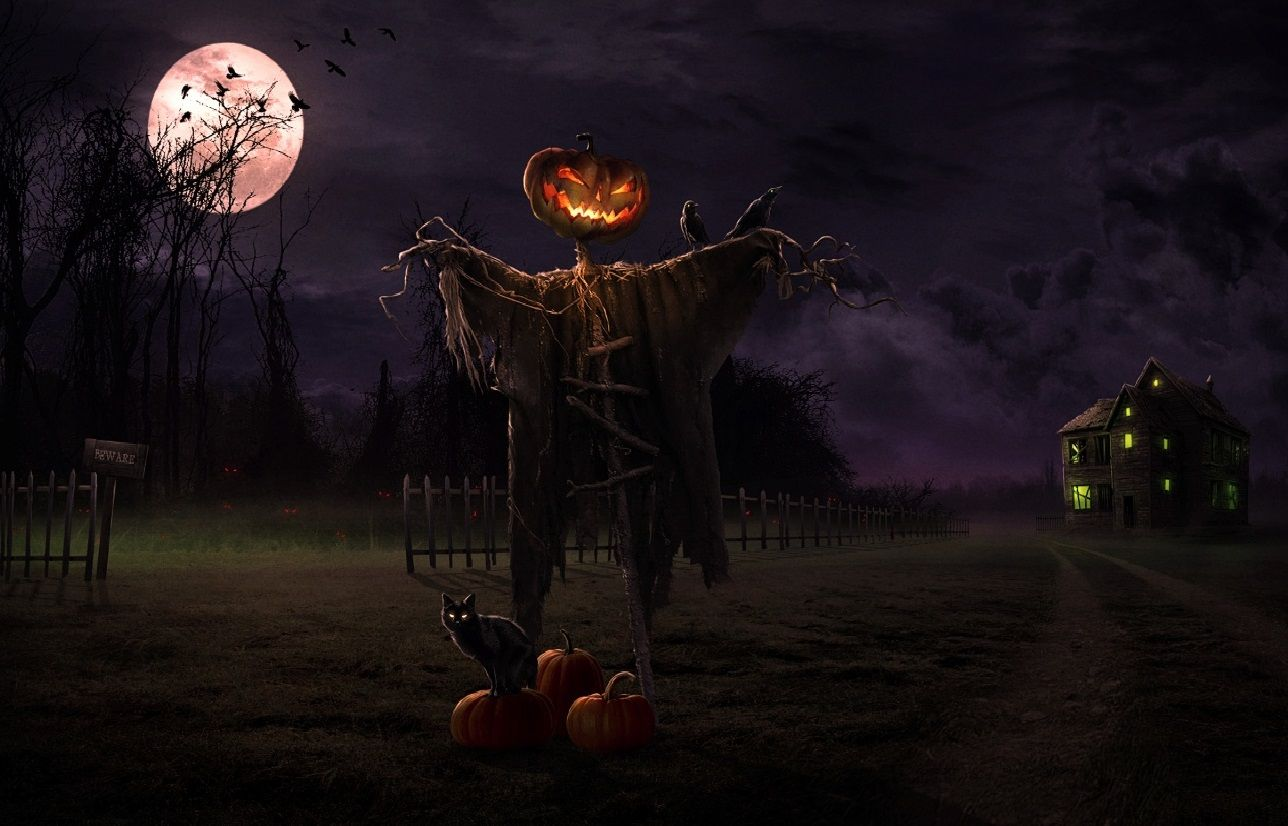 evil pumpkin scarecrow Google Search Scary halloween