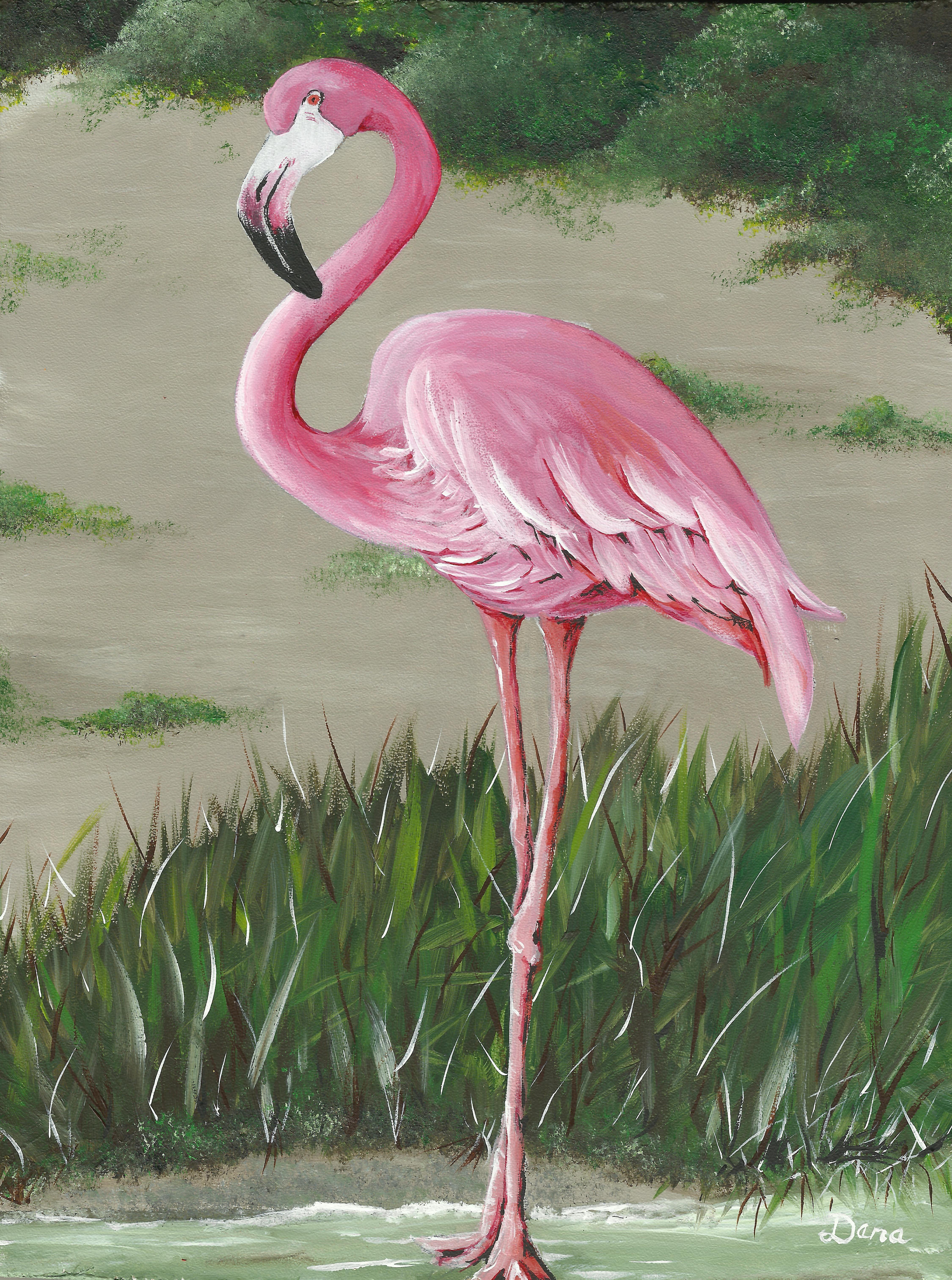 удивительно, картинка розового фламинго рисунок оставил немаленький след