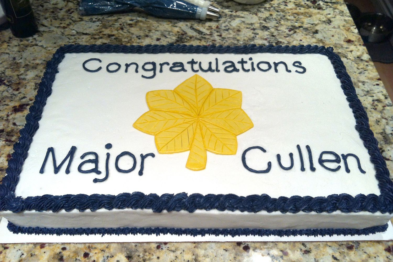 Air Force Major Promotion Cake. Vanilla Cake with Buttercream ...