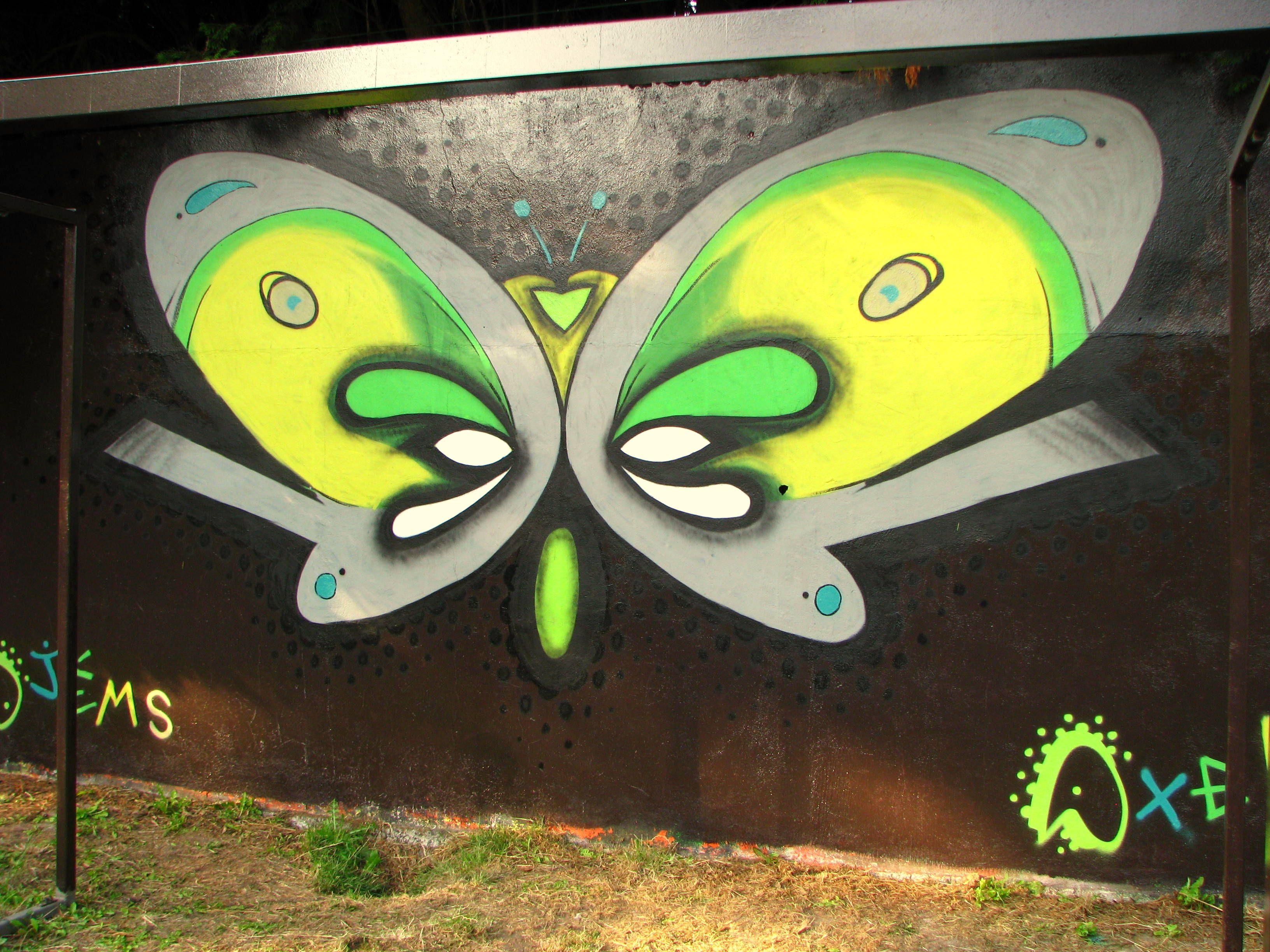 #james #axelska #graffiti #street_art #papillon #deco #wall #spray #marquette #mur_legal #fresque