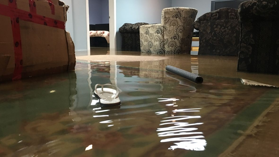 where to call if your basement is flooded cbc ca canada rh pinterest com au