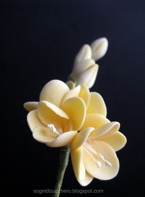 Freesia Sugar Flowers Gum Paste Flowers Sugar Flowers Tutorial Sugar Flowers