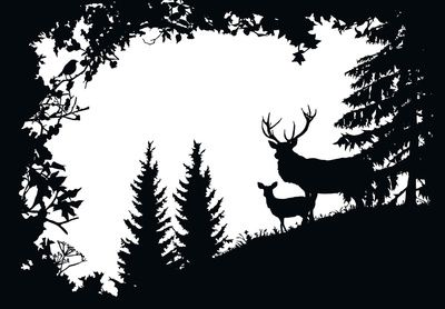 Stag and Deer in the Forest Art Print #burnedwoodstenciling