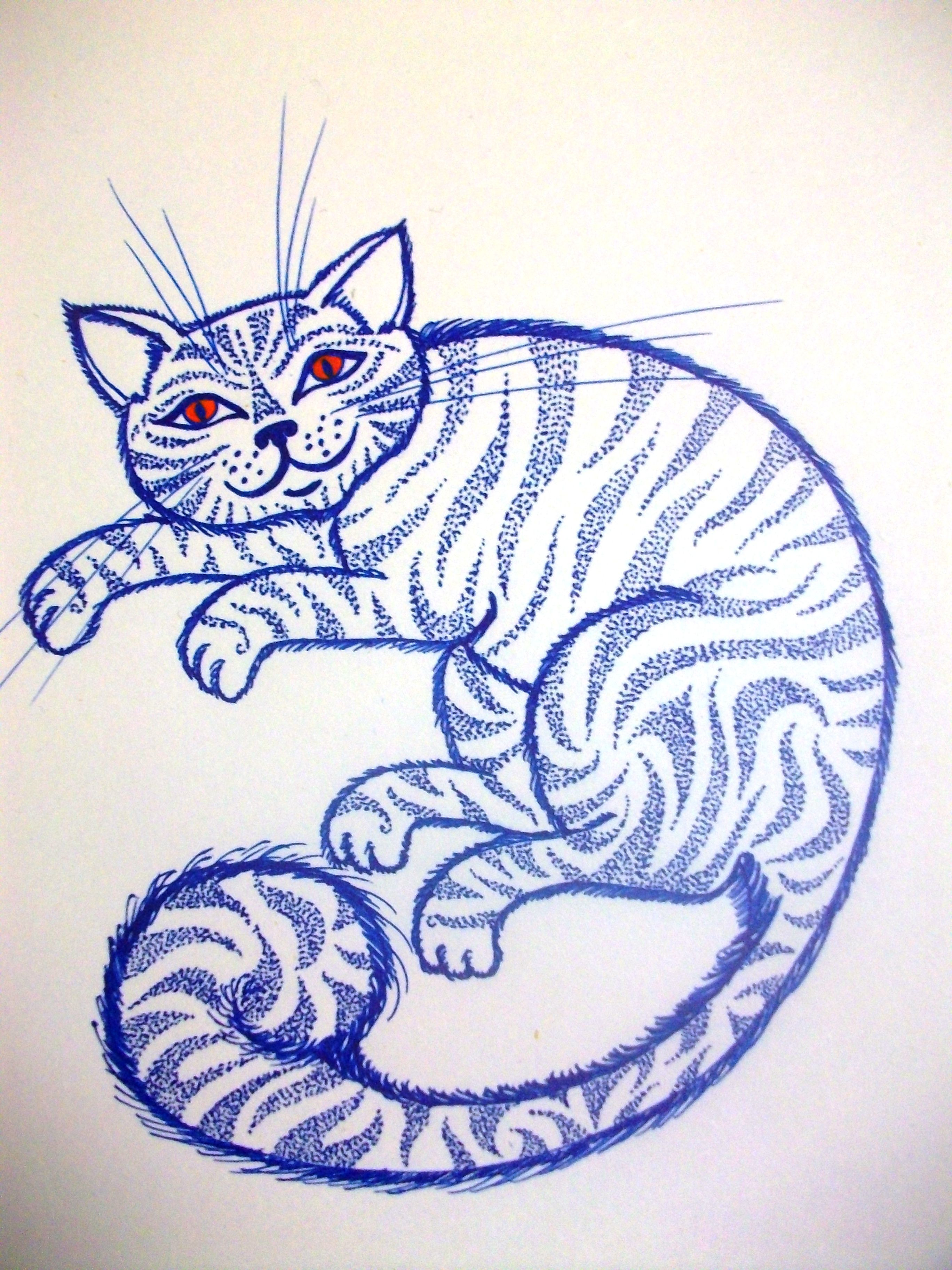 cat by Casey