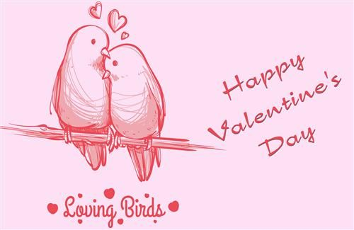 Loving Bird Valentines Day Hd Image Background Valentines Day