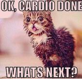15 Most Funny Fitness Memes to Give You A LOL Break  Cardio done! Now what's next? Funny fitness mem...
