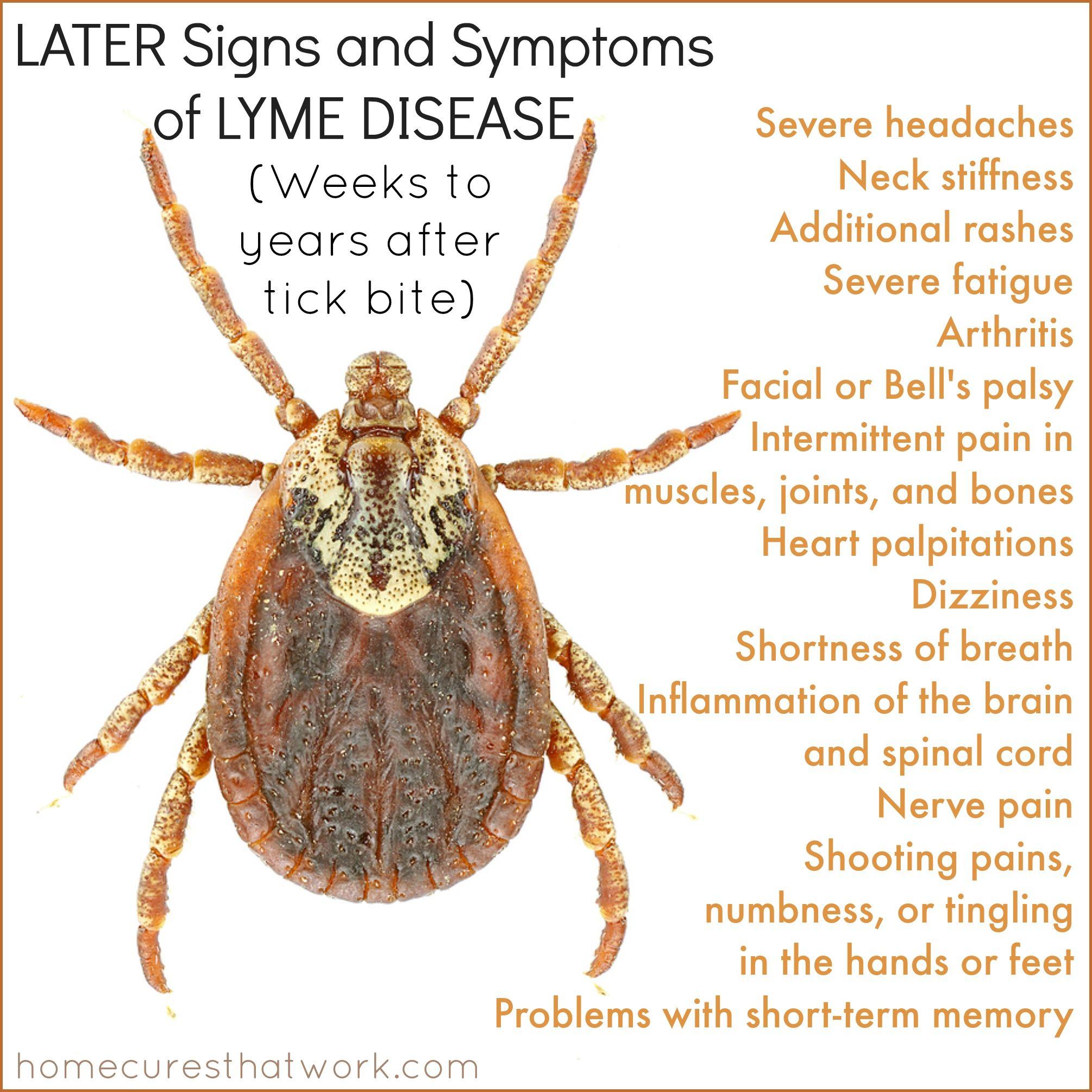lyme disease symptoms years later