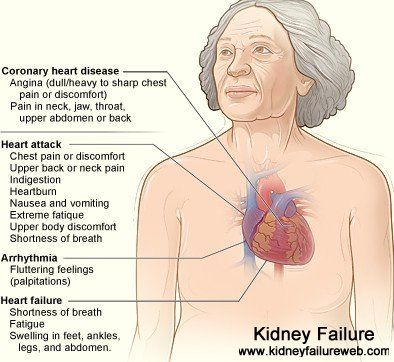 Pin by Holly Roth on Health: Chronic Kidney Disease | Heart disease