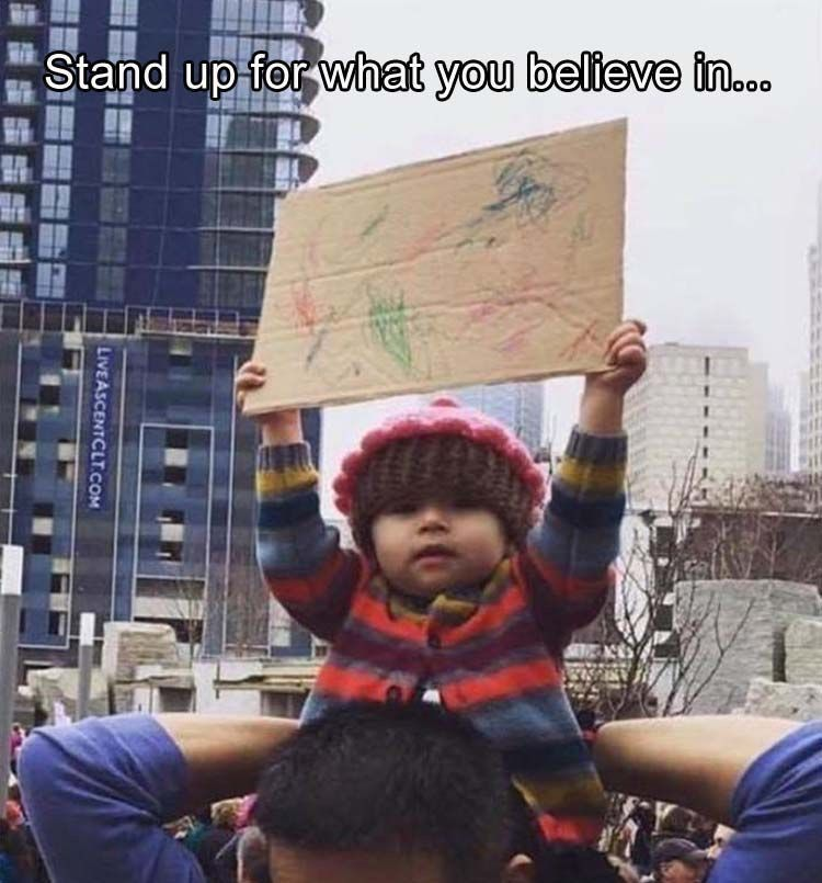 Pin By Deacon On For Me Funny Pictures Funny Babies Womens March Signs