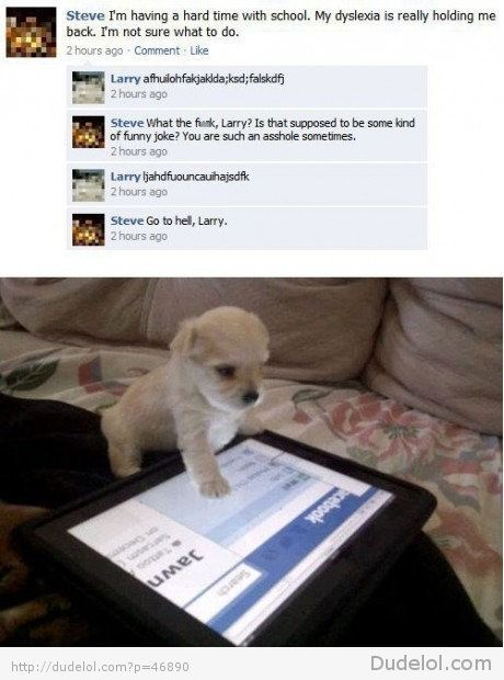 Larry, the puppy..wonder if he would accept my friend request?! ;)