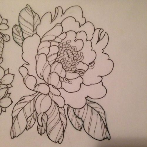 Peony Line Drawing Tattoo : Peony tattoo google search spirited away insp