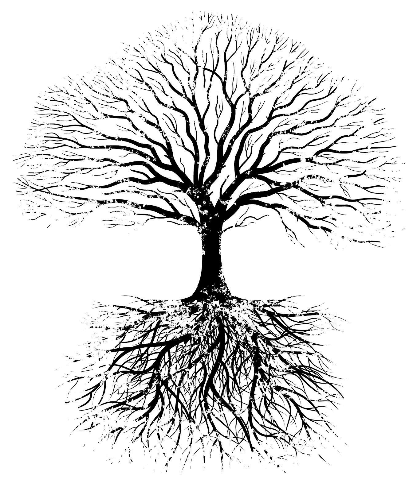 You Must Be Rooted Before You Can Expand Http Quartzmeaning Com Arboles Png Arbustos Arbol De La Vida