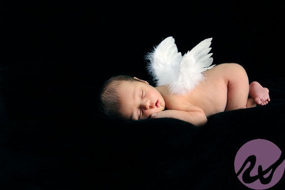 Newborn cherub angel wings photo prop for professional keepsake portraits natural hand sculpted white feather wings