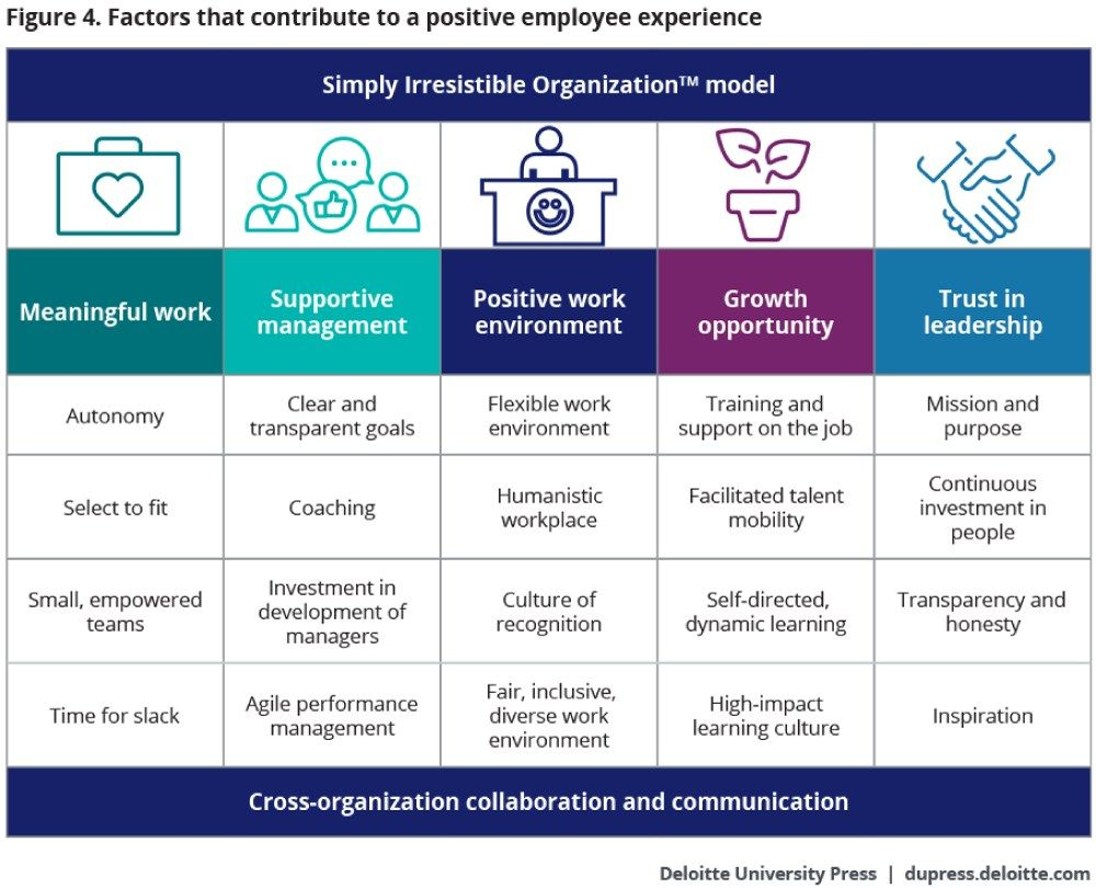 factors that contribute to a positive employee experience