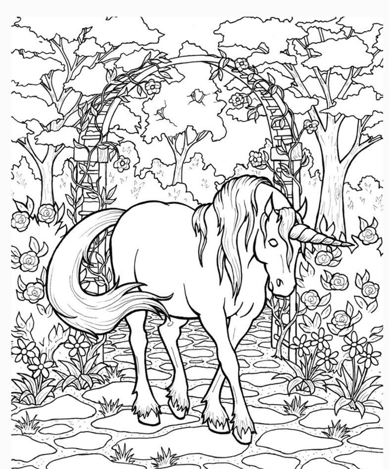 Unicorn Coloring Pages For Adults - Best Coloring Pages For Kids Unicorn  Coloring Pages, Horse Coloring Pages, Animal Coloring Pages