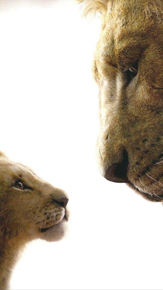 #cinema desenho #Mufasa #Simba Simba and Mufasa 💛❤ Simba and Mufasa ... - Cinema - Movies and More