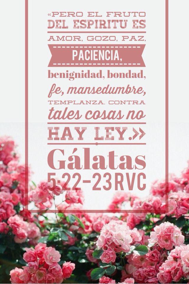Galatas 5 22 23 Los Frutos Del Espíritu Santo Dios Fruto