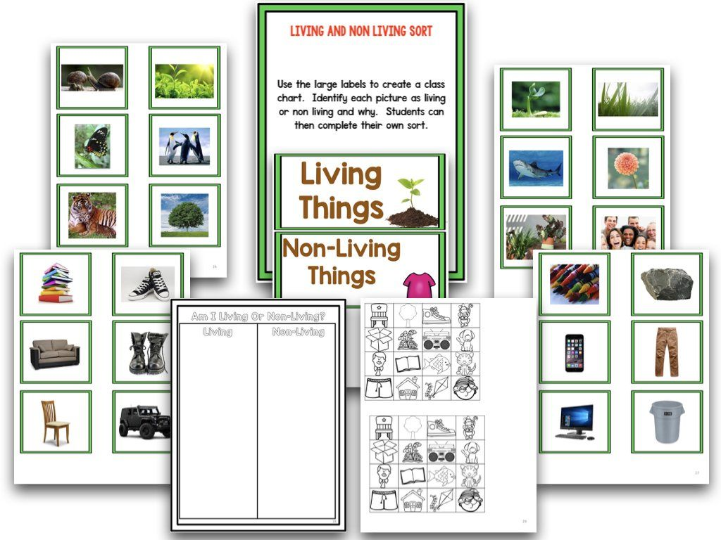 Living And Nonliving A Research And Writing Project