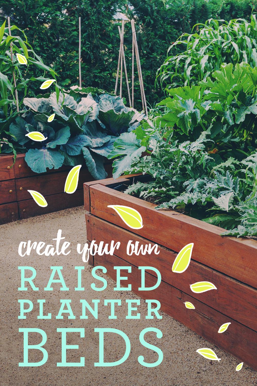 Planting Plans Raised planter beds, Planting plan
