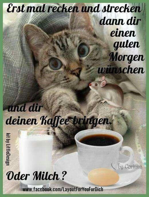 Guten Morgen Guten Morgen Lustig Lustige Guten Morgen