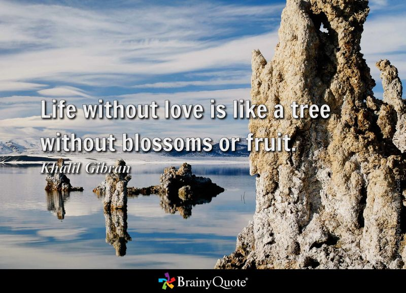 Life without love is like a tree without blossoms or fruit. - Khalil Gibran