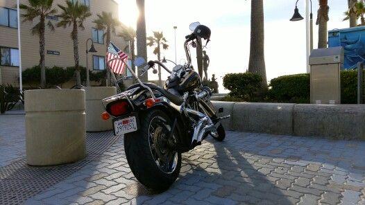My Harley-Davidson Softail Custom fxstc