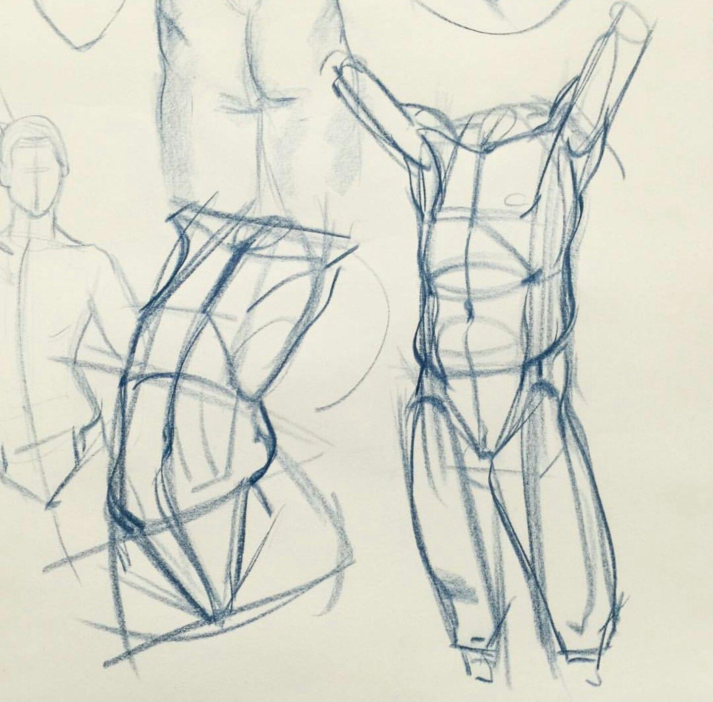 Pin von Kim MacNeil auf Anatomy Reference | Pinterest