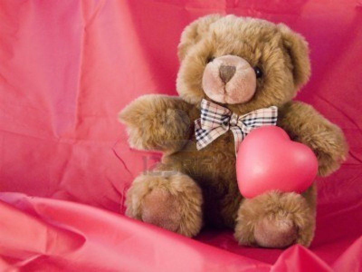 Teddy Bear Wallpaper Border Happy Year Wishes Quotes