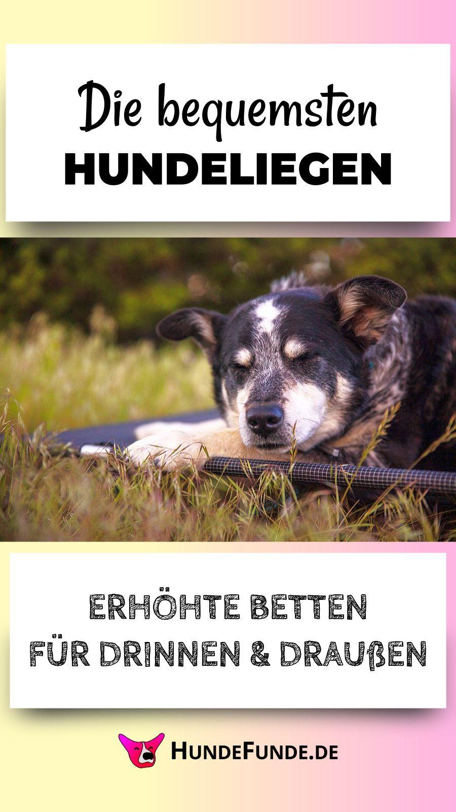 Hundeliegen Fur Draussen Drinnen Training Und Unterwegs Hunde Hunde Bett Kuschelsack Hund