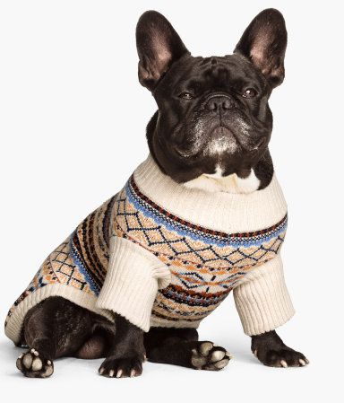 h&m weihnachtspullover hund